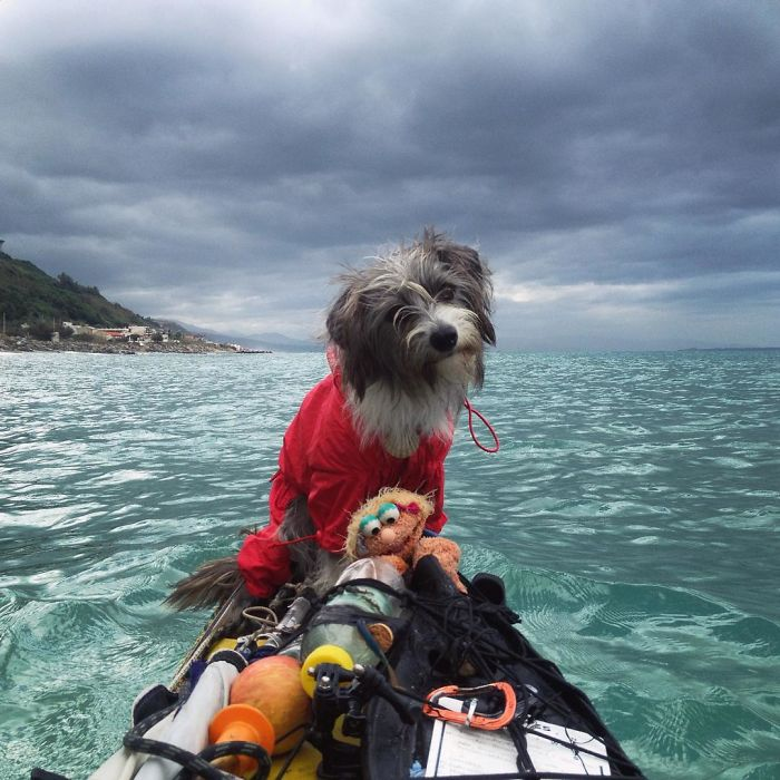 Im-kayaking-along-the-Mediterranean-Sea-since-three-years-and-Im-taking-my-found-dog-with-me-5742ce17519f5__700